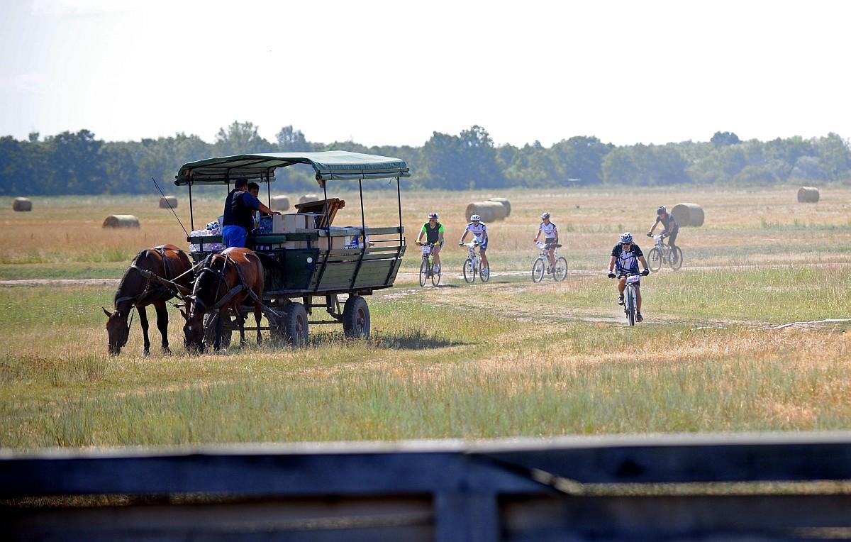 Több mint 500 kerékpáros a jubileumi E.ON Délibáb Sportfesztiválon, Ugyan nem az előző évek rekkenő hősége fogadta július 13-án, a Délibábon induló kerékpárosokat, gyalogosokat és futókat, de így is 24 fokban, és napsütésben vághatott neki a távoknak a közel kétezer induló.