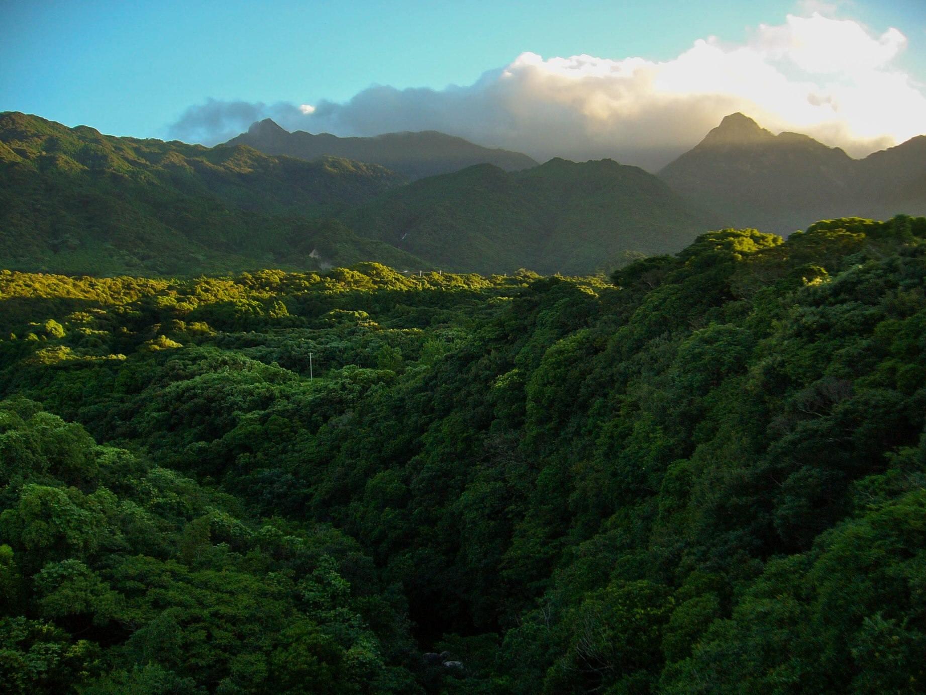 1.Japán 73%-a hegyvidék és az ország 67%-át borítja erdő. Meglepő, de leszámítva a nagyvárosokat, bizony erre kell felkészülni.