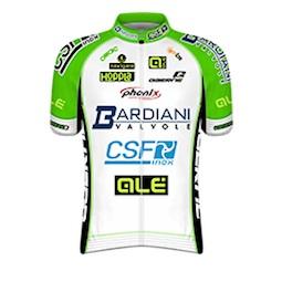 Bardiani-CSF-Pro-Team-2014