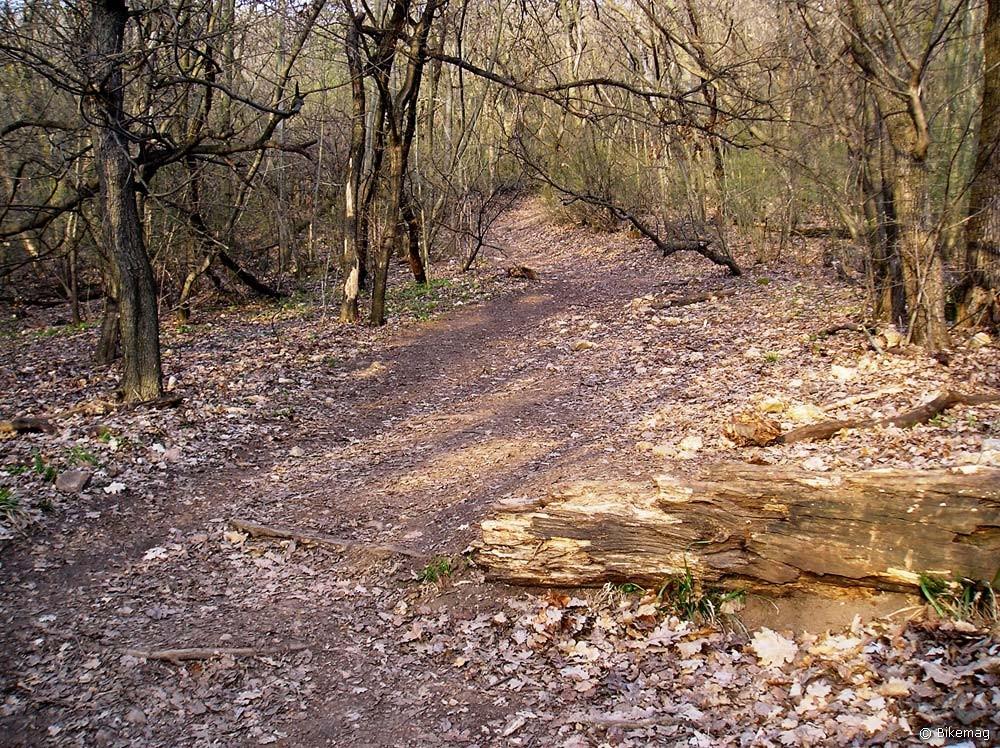 A falevelekkel fedett kiszáradt talaj nem a legjobb kombó fékezés szempontjából