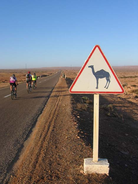 Európai szemnek szokatlan közlekedési tábla Nyugat-Szaharában