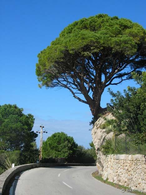 Mallorca_15