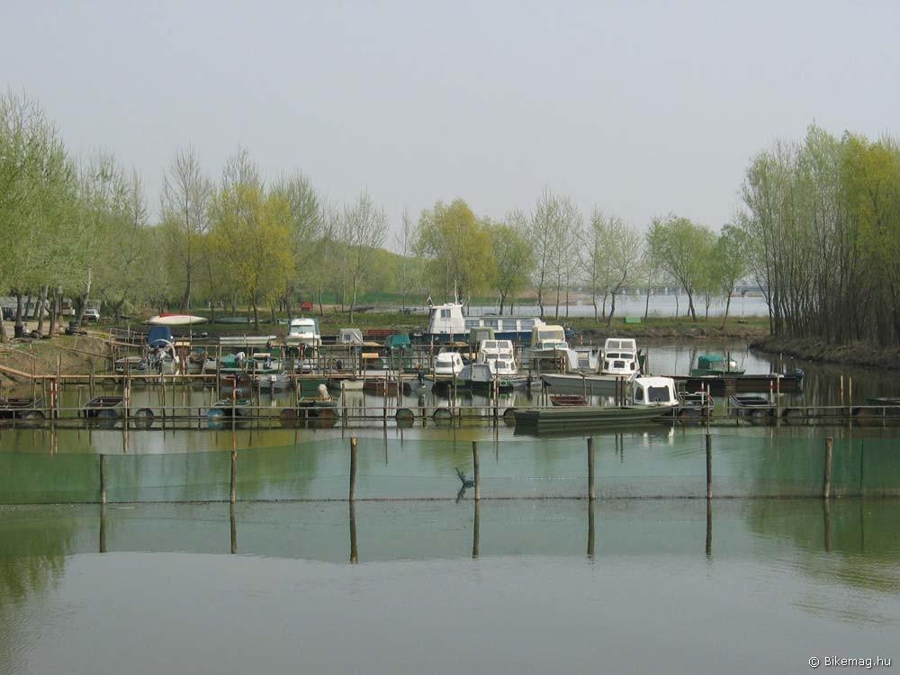 A Tisza-tó ezzel a látvánnyal fogad Poroszló mellett