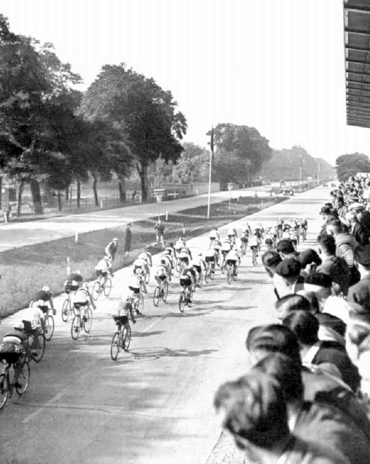 Az 1936. évi olimpia országúti mezőnyversenyének élbolya