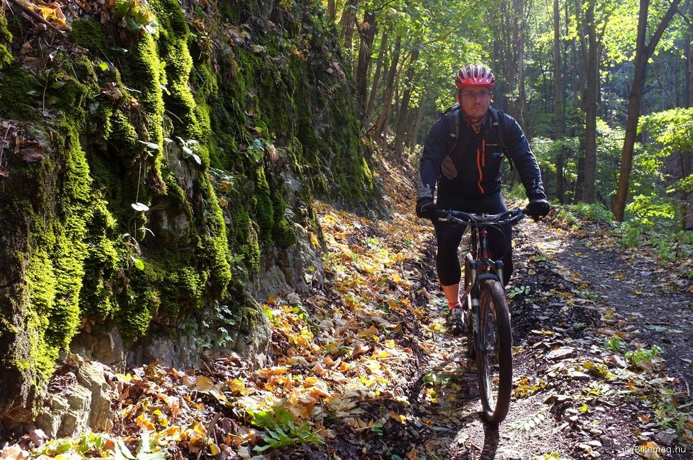 A túrázás is önfeledt élmény, bármelyik Specialized Stumpjumper FSR-rel