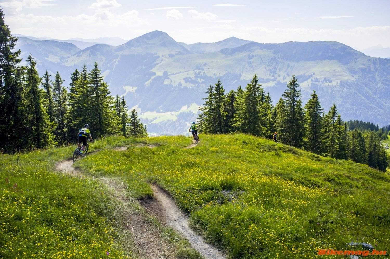 all_mountain_trail_mountain_bike_11