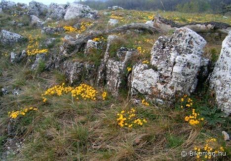 A legszebb sziklakerteket a természet produkálja!