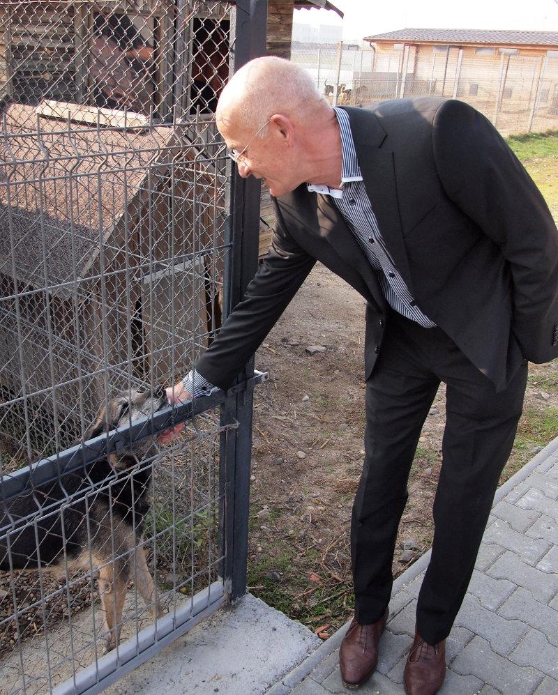 Krauter úr állatmenhelye a gyár mellett: négy főállású gondozó és egy állatorvos gondozza az utcáról befogott több száz ebet, amelyek a cudar élet után szerető környezetben, saját készítésű infrafűtésű kutyaházakban regenerálódhatnak.