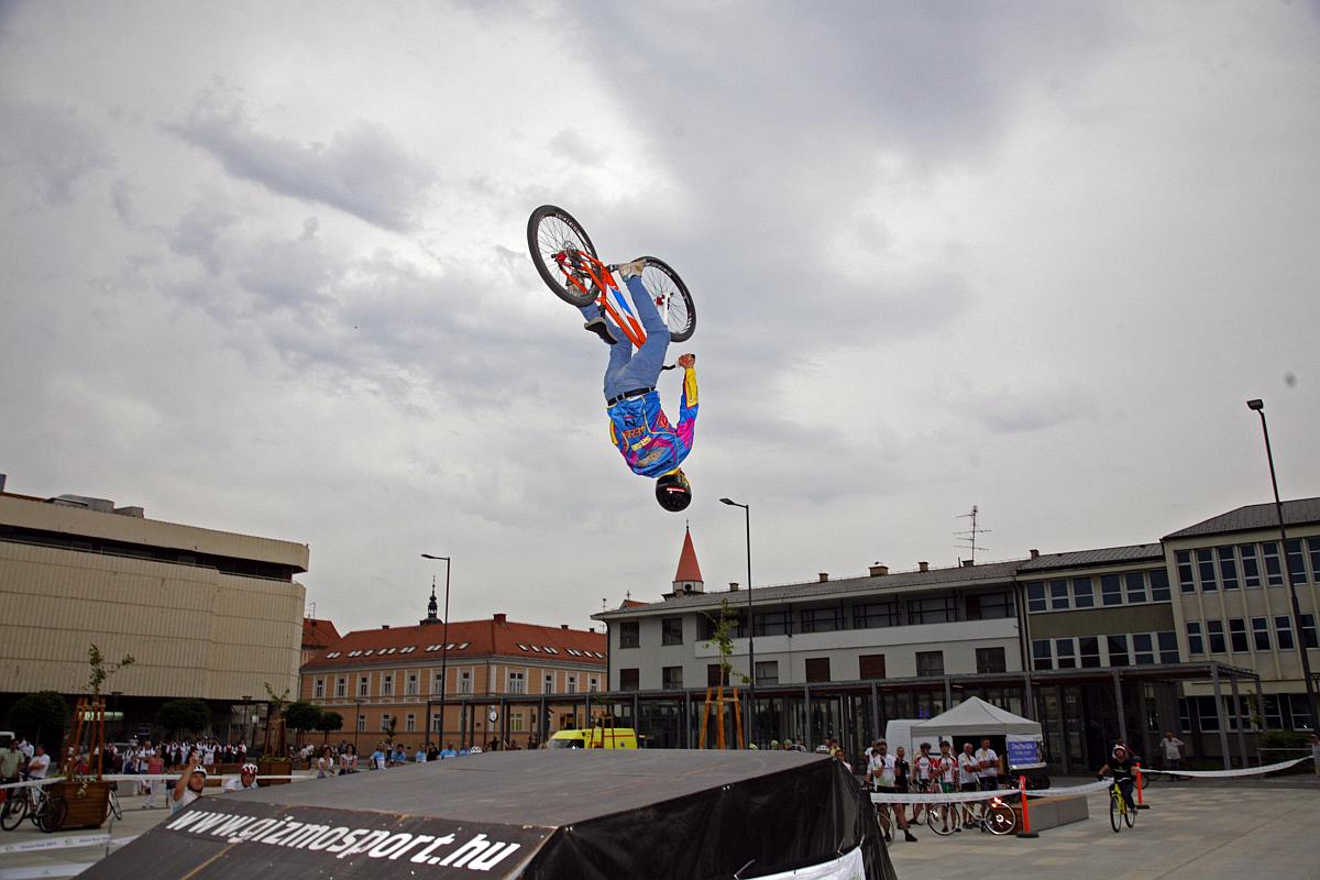 Freestyle show