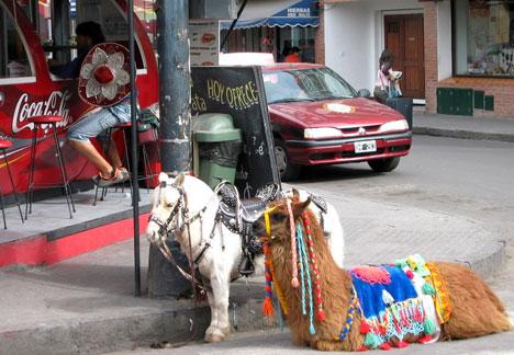 Parkolózóna Argentínában