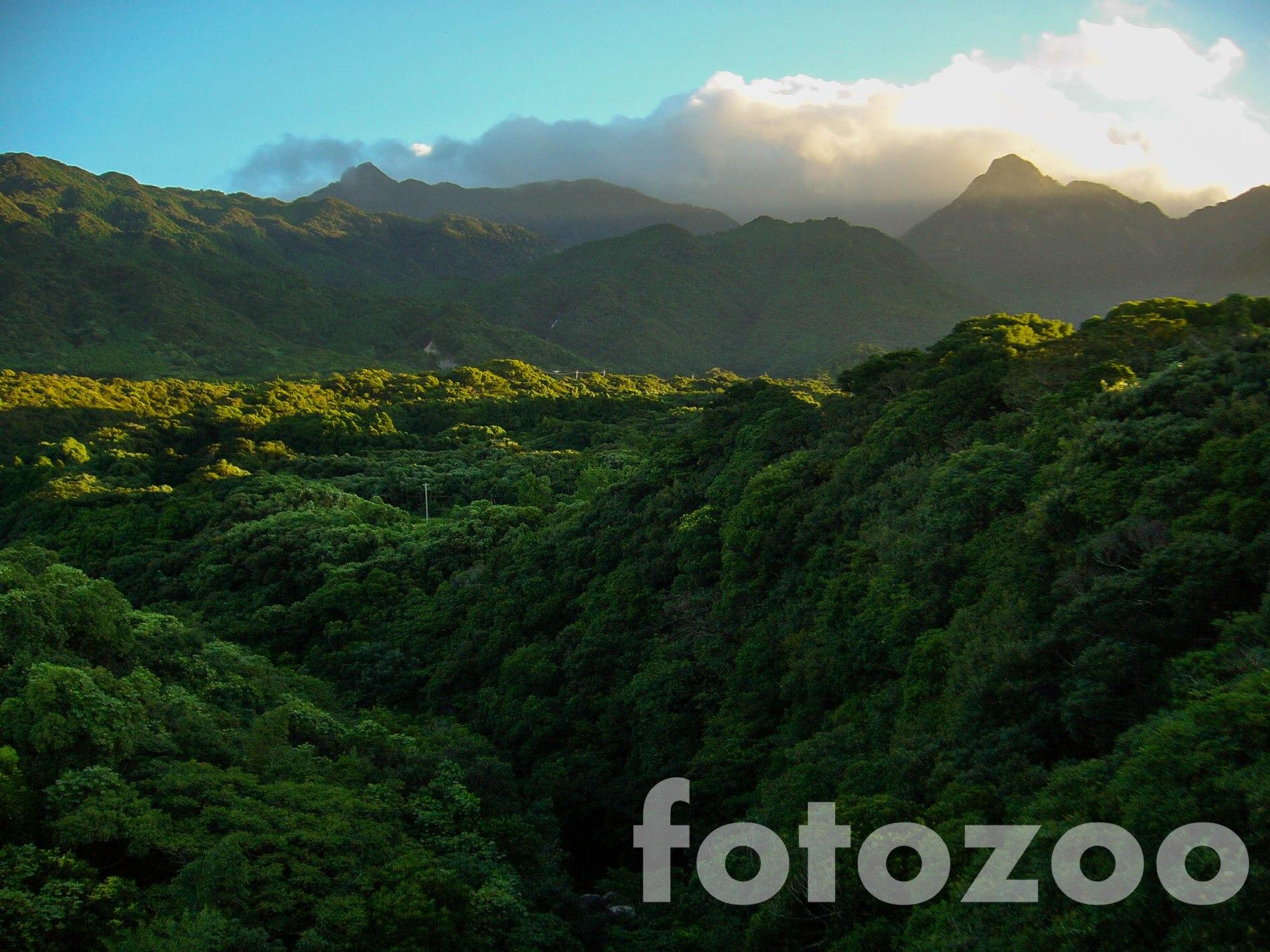Őserdők és hegyek mindenütt.