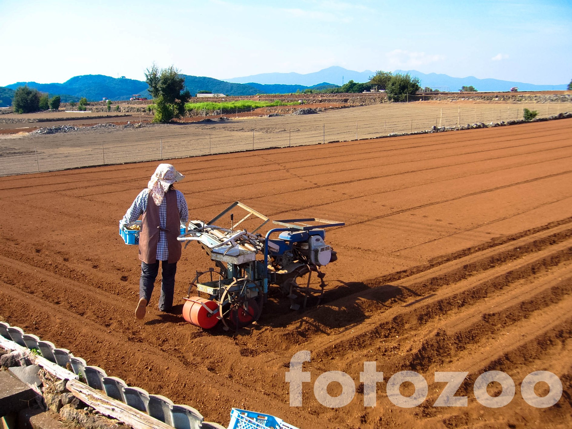 Az Unzen régió termékeny, vörös táptalaja. A high-tech országában is létezik kétkezi földművelés.