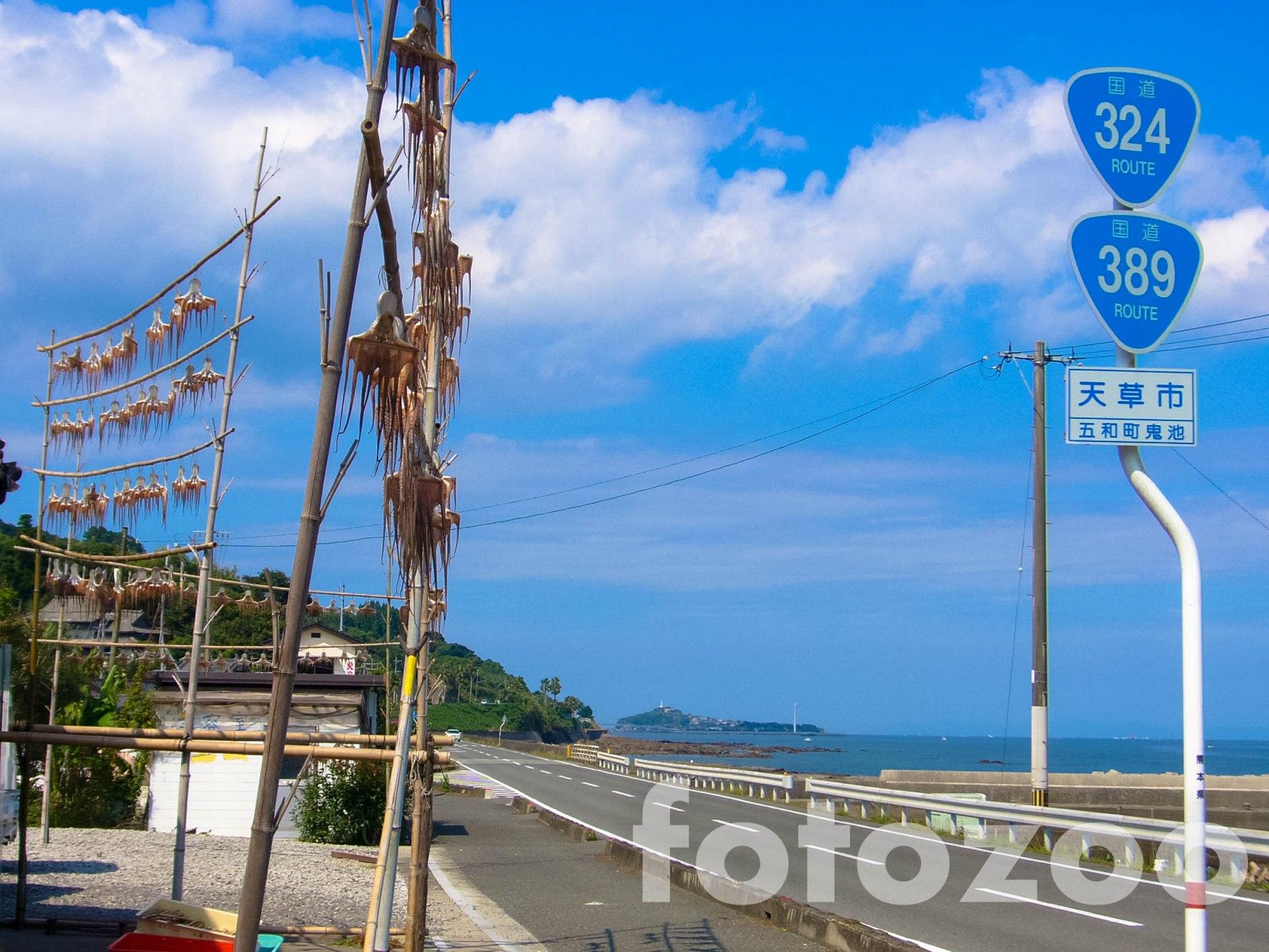 Tintahalak száradnak a háromszázvalahányas országút mentén, az Amakusza szigeteken. Gyorséttermek hiányában kénytelenek igazi halat enni errefelé.