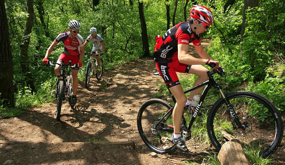 Hamarosan ismét legális mountain bike útvonalak lehetnek a János-hegyi ösvények, de fontos egy szigorú etika betartása