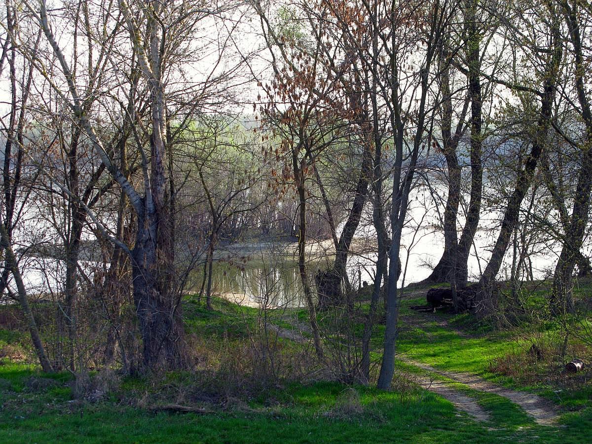 Átcsillog a Duna