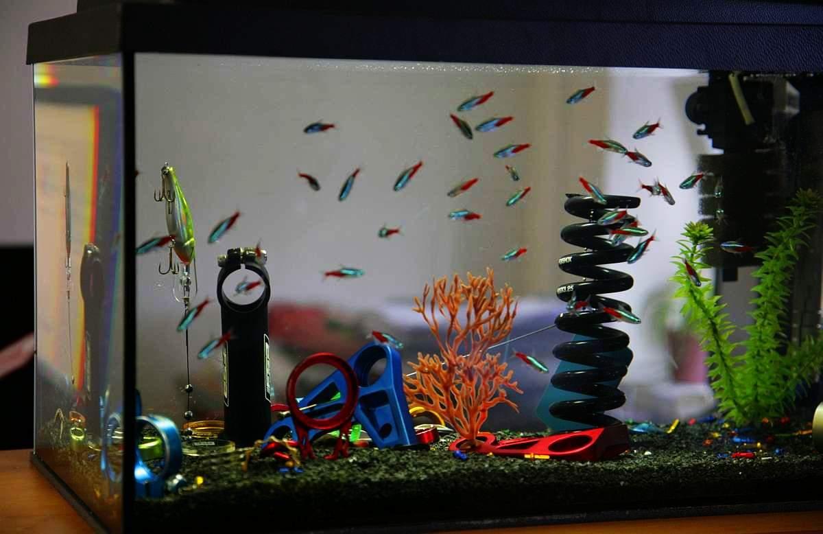 Nem Meseországban jártunk, ez csak egy akvárium a fejlesztési részleg egyik irodájában