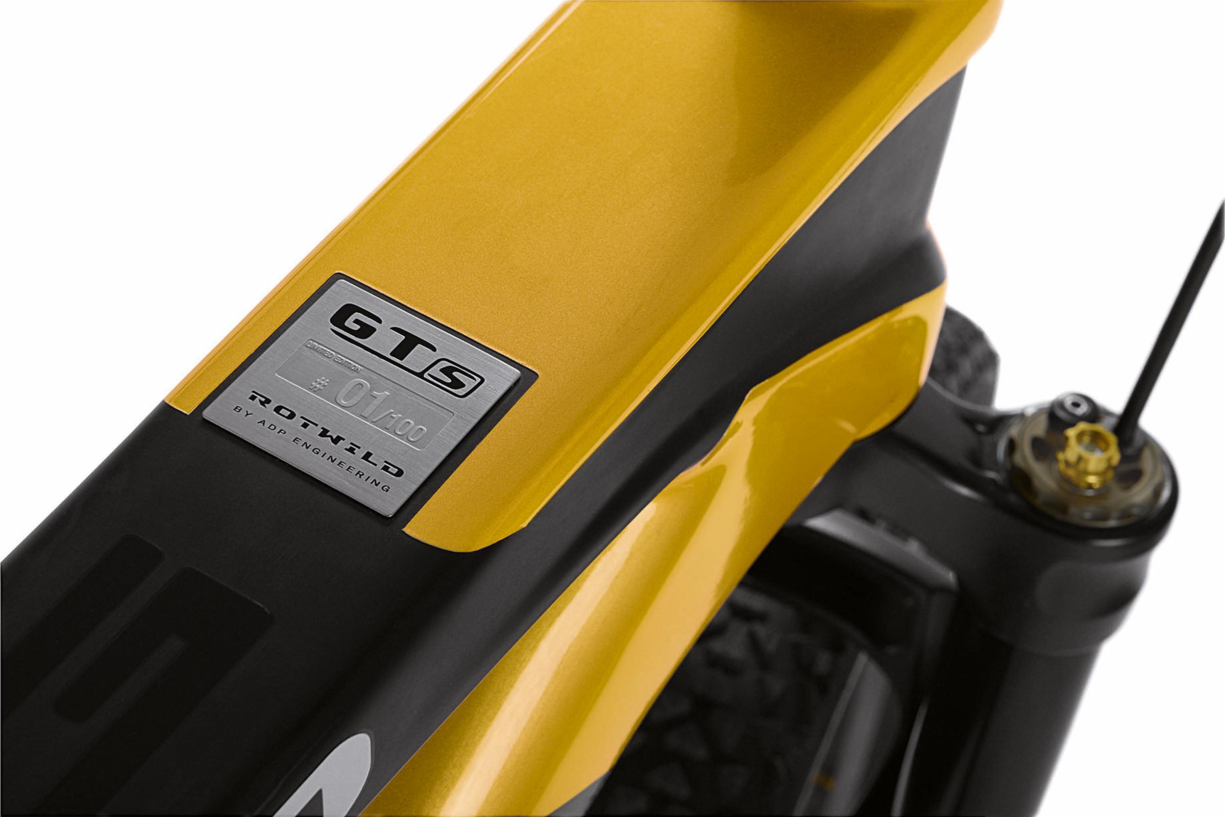 rotwild-mercedes-amg-gts-bike8