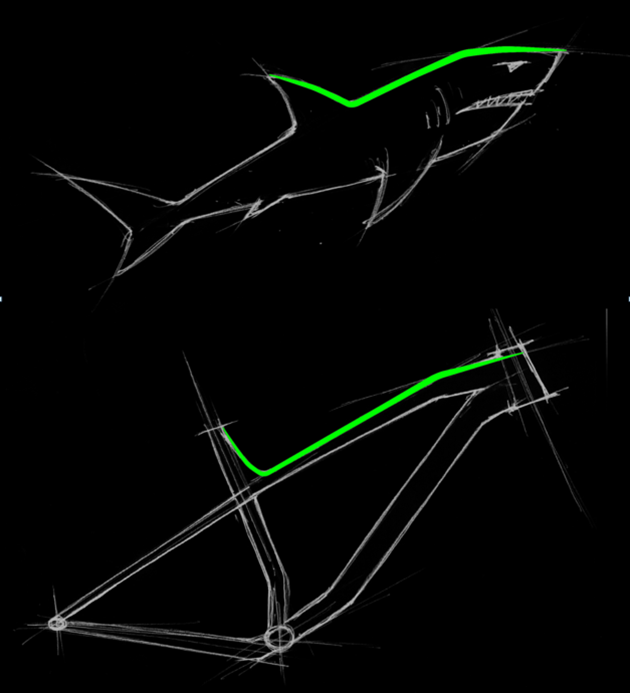 sharkspine