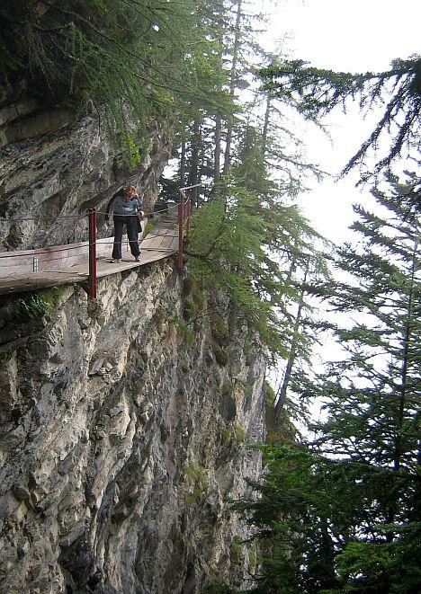 A gyalogosan is nehezen járható turistaút egyik könnyebb szakasza...