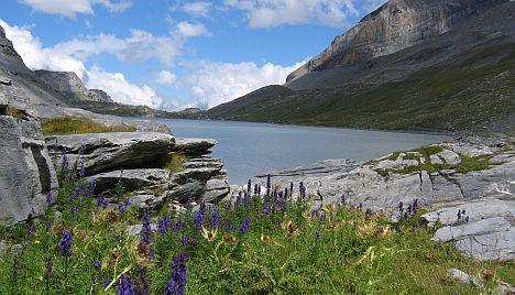 Birkaitató, vagyis a Daubensee 2000 méteres magasságban...
